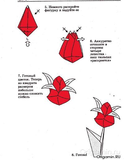 Цветы из бумаги своими руками схемы тюльпаны